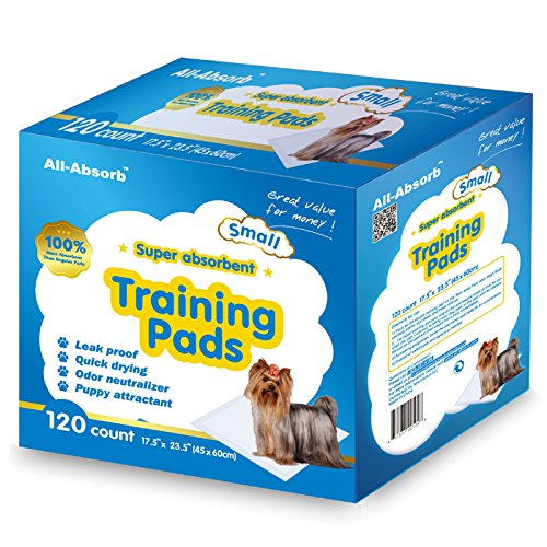 All-Absorb  Small Training Pad